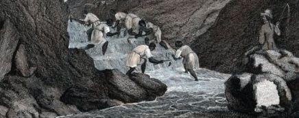 Escravos Brasil